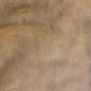 Luxury Apricot Fur